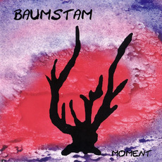 Moment mp3 Album by Baumstam