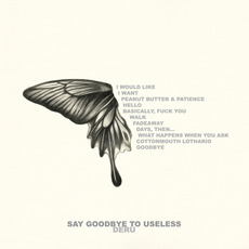 Say Goodbye to Useless mp3 Album by Deru