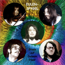 Staub auf deinem Haar mp3 Album by Eulenspygel