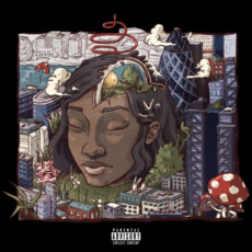 Stillness in Wonderland mp3 Album by Little Simz