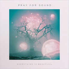 Everything Is Beautiful mp3 Album by Pray for Sound