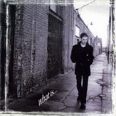 What Is... mp3 Album by Richie Kotzen
