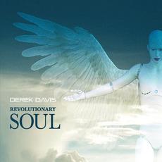 Revolutionary Soul mp3 Album by Derek Davis