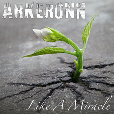 Like a Miracle mp3 Album by Arkeronn