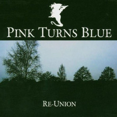 Re-Union mp3 Artist Compilation by Pink Turns Blue