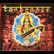 Tantrance 12: A Trip to Psychedelic and Progressive Trance mp3 Compilation by Various Artists