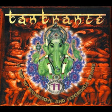 Tantrance 11: A Trip to Progressive and Psychedelic Trance mp3 Compilation by Various Artists