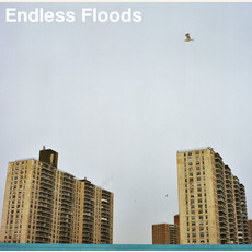II mp3 Album by Endless Floods