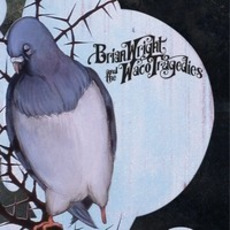 Bluebird mp3 Album by Brian Wright and the Waco Tragedies