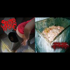 Bowel Stew / Outhouse Espionage