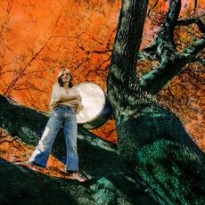 Stitch of the World mp3 Album by Tift Merritt
