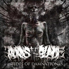 Tides of Damnation mp3 Album by Boris the Blade
