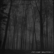 Avitacion 101 / Ruinas mp3 Compilation by Various Artists
