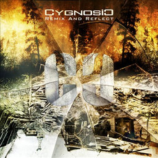 Remix And Reflect mp3 Remix by CygnosiC