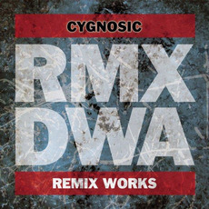 D/W/A Remix Works mp3 Compilation by Various Artists
