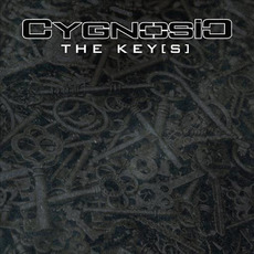The Key[s] mp3 Single by CygnosiC