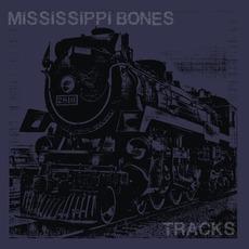 Tracks mp3 Album by Mississippi Bones