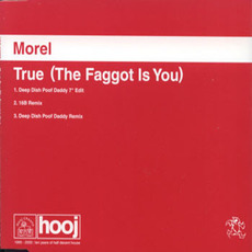 True (The Faggot Is You) mp3 Single by Morel