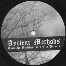 Turn Ice Realities Into Fire Dreams mp3 Album by Ancient Methods