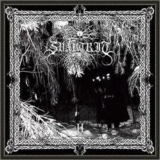 II mp3 Album by Svartrit