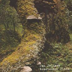 Kosmischer Pitch mp3 Album by Jan Jelinek