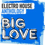 Big Love Electro House Anthology