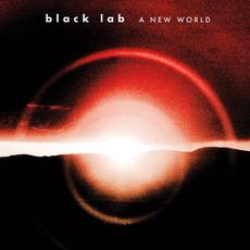 A New World mp3 Album by Black Lab