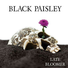 Late Bloomer mp3 Album by Black Paisley