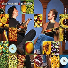 Into the Cauldron mp3 Album by Mike Marshall & Chris Thile