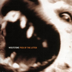 Pick of the Litter mp3 Artist Compilation by Wolfstone