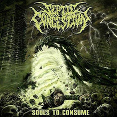 Souls To Consume mp3 Album by Septic Congestion