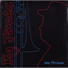Now You Know mp3 Album by Big James