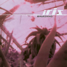 Awakening mp3 Album by Iris (USA)