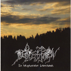 Ein Kakophonisher Lebenshauch mp3 Live by Depression