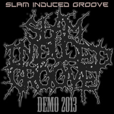 Demo 2013 mp3 Album by Slam Induced Groove