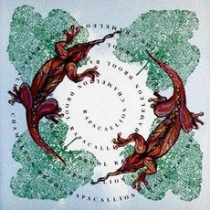 Chameleon Drool mp3 Album by Rapscallion