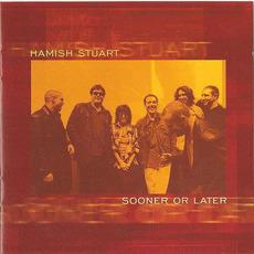 Sooner Or Later mp3 Album by Hamish Stuart