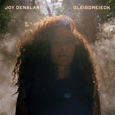 Gleisdreieck (Deluxe Edition) mp3 Album by Joy Denalane