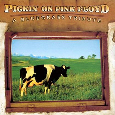 Pickin' On Pink Floyd: A Bluegrass Tribute mp3 Compilation by Various Artists