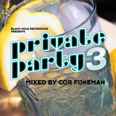 Private Party 3 by Various Artists