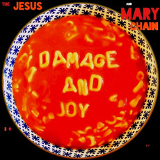Damage and Joy mp3 Album by The Jesus And Mary Chain