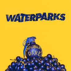 Double Dare mp3 Album by Waterparks
