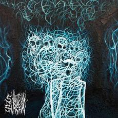 The Black Room mp3 Album by Shotgun Surgeon