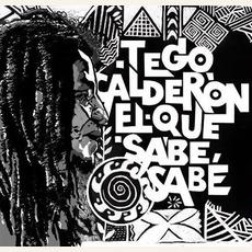 El que sabe, sabe by Tego Calderón