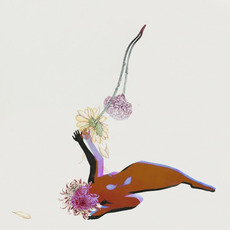 The Far Field mp3 Album by Future Islands