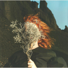 Silver Eye mp3 Album by Goldfrapp