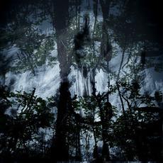 Void.Eternal. mp3 Album by Cursed Altar