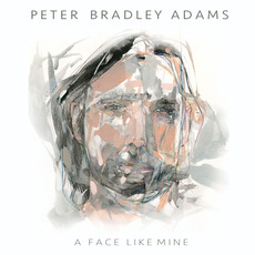 A Face Like Mine mp3 Album by Peter Bradley Adams