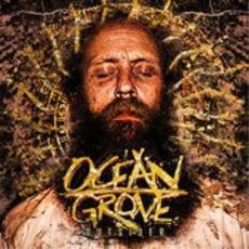 Outsider mp3 Album by Ocean Grove