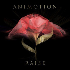 Raise Your Expectations mp3 Album by Animotion